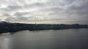 Newcastle8